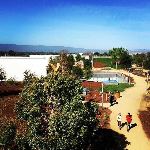 Detalle de una zona del jardín de la parte superior del edificio del nuevo Campus de Facebook.