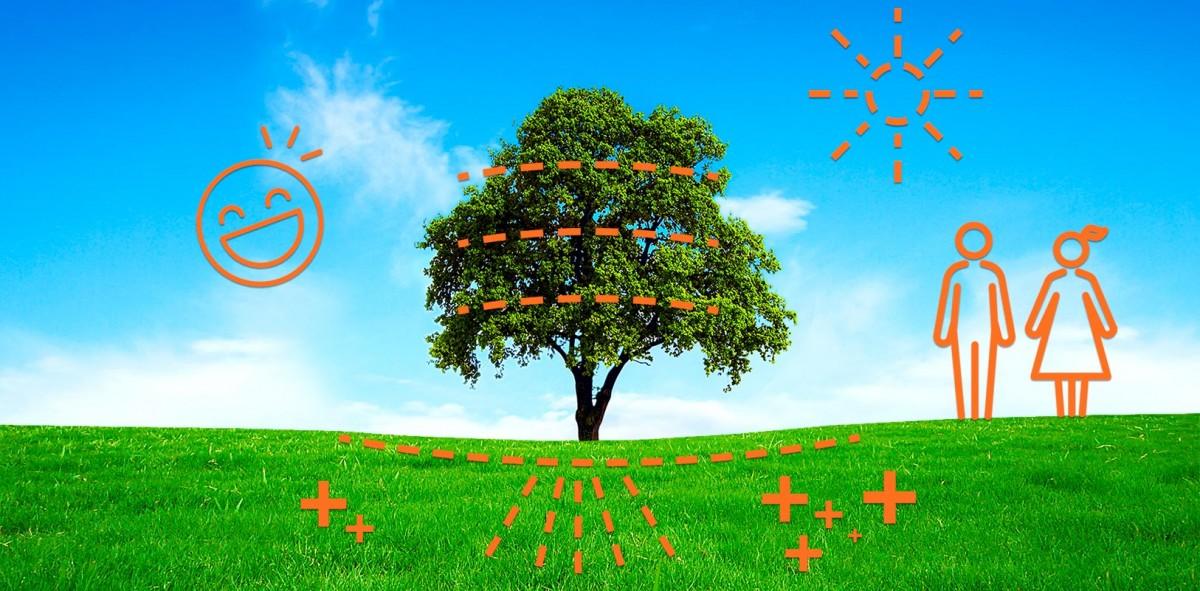 Árbol estratégico, una nueva cultura para el modelo de negocio