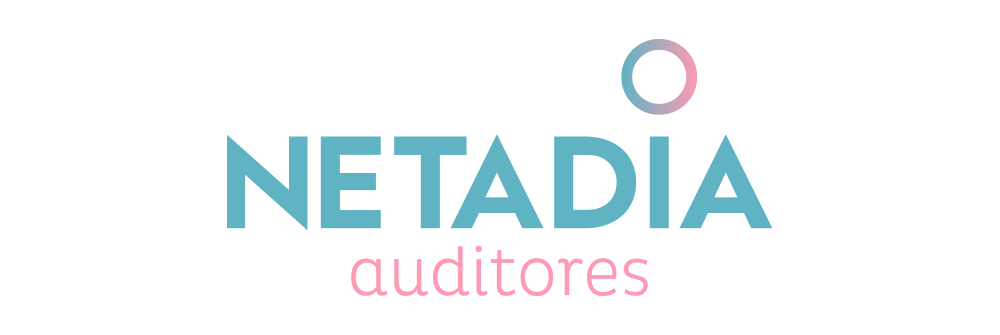 Diseño logotipo Netadia Auditores