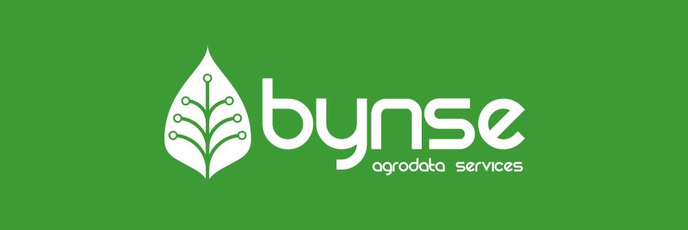 Diseño logotipo Bynse