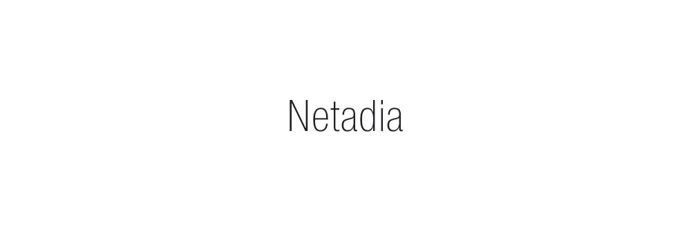 Proyecto de Naming, diseño identidad verbal, creación de nombre Netadia
